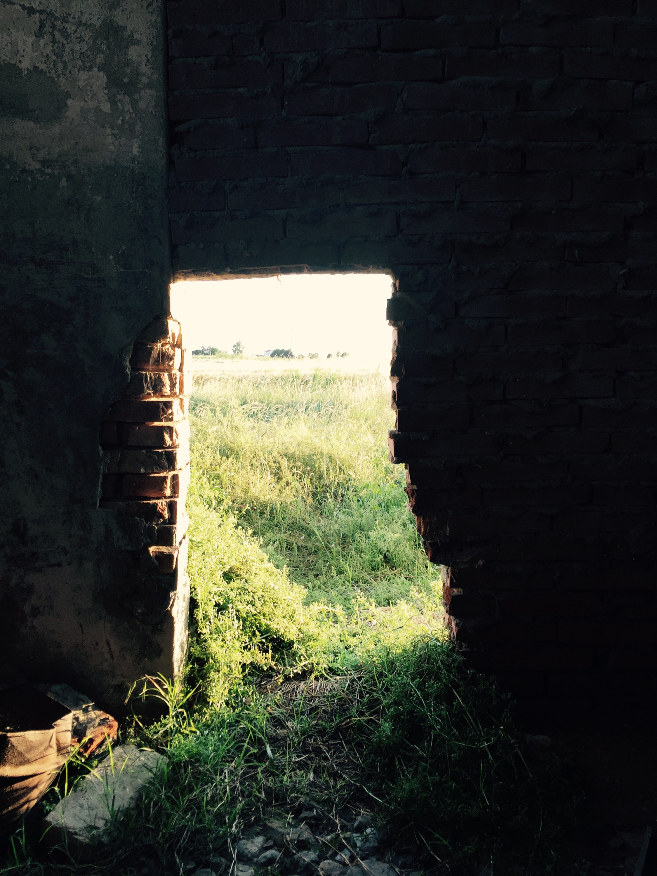 Bricked up doorway looking at field, Italy