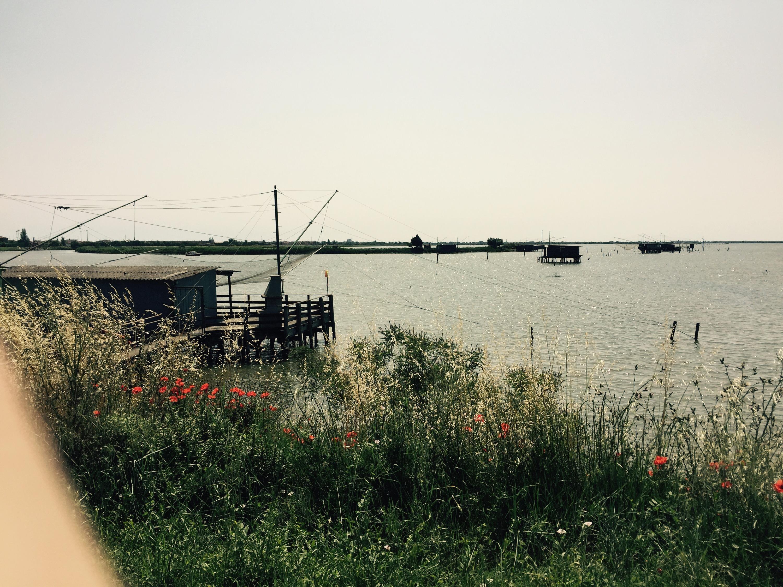 Fishing nets, Italy