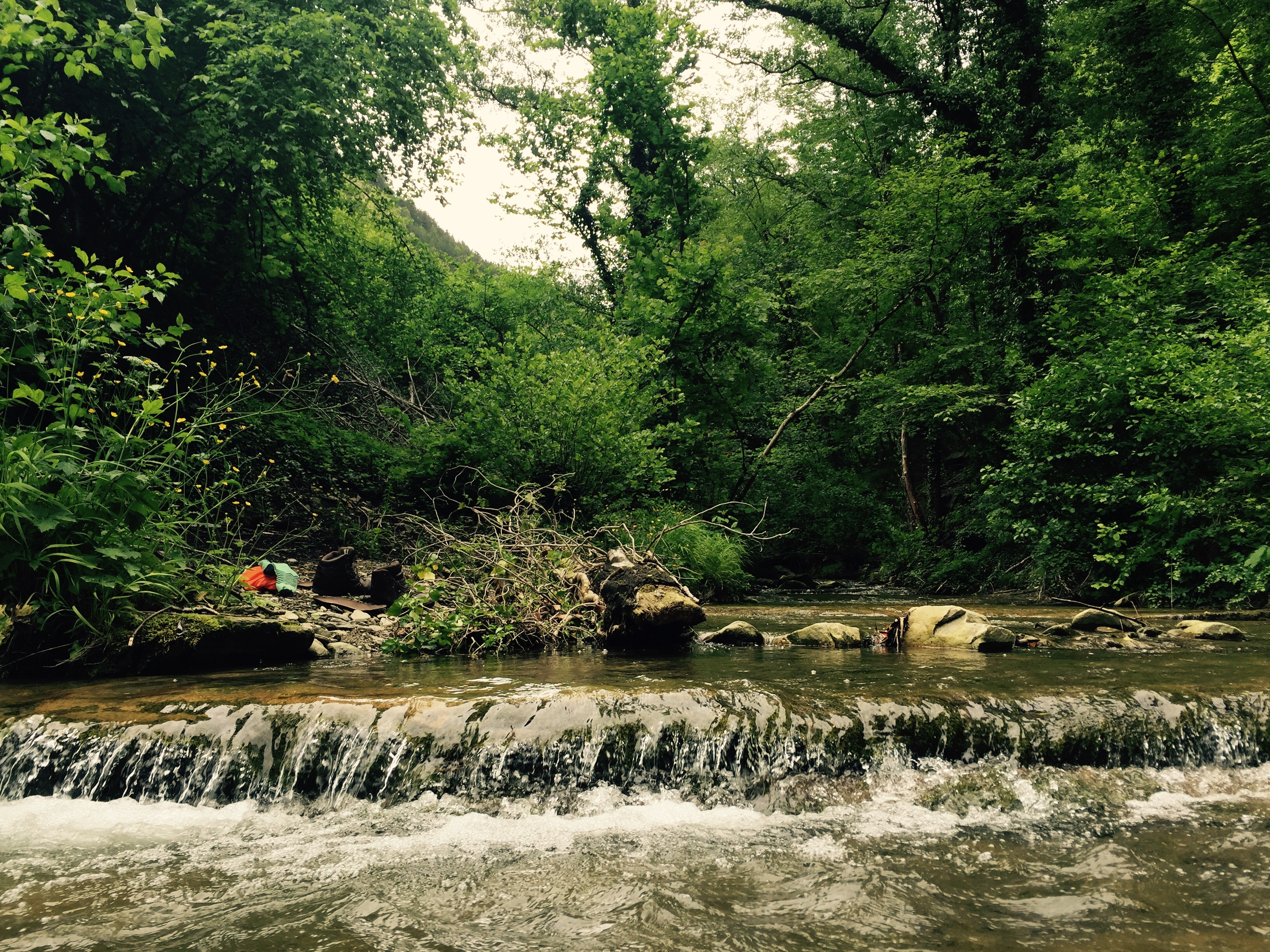 Cooling off in mountain river